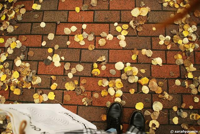 autumn in manchester