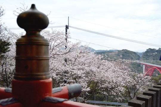 naritasan_sakura_20140402_5