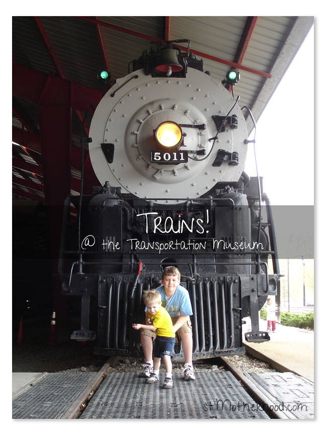 trains at the Transportation Museum