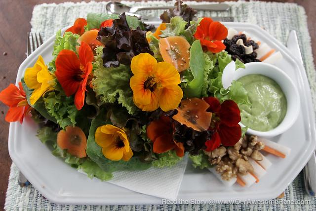 Eve's Garden Lunch-7.jpg