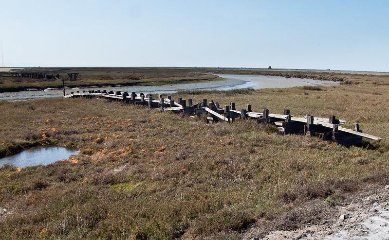 Salt Marsh,Don Edwards San Francisco Bay National Wildlife Refuge