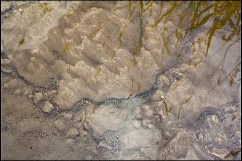 Flussgrund
