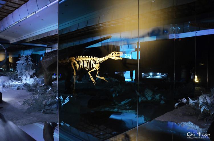 地球最古老的恐龍展15.jpg