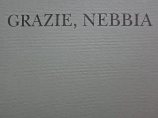 W. H. Auden, Grazie, nebbia; Adelphi 2011 [responsabilità grafica non indicata]. Copertina (part.), 4