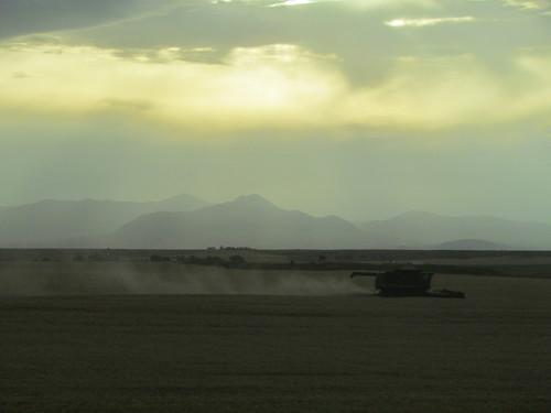 Z Crew - distant hills
