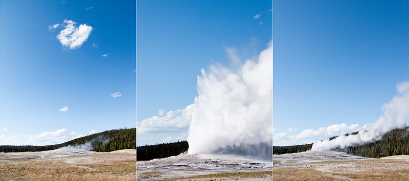 Old Faithful Geyser erupting during a beautiful summer morning