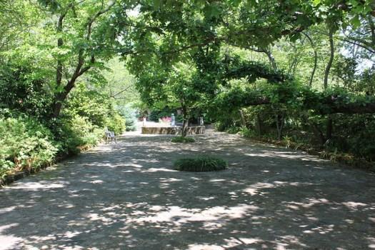 Jasmine Hill Gardens, Wetumpka AL