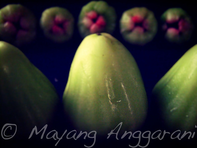 Jambu air Cincalo