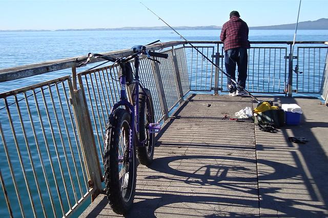 Murrays Bay Fisherman