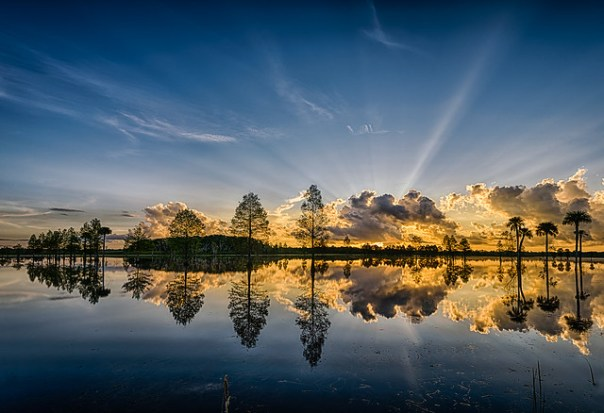 Lake Searcy sunrise (Orlando Wetlands Park, Christmas, Florida)