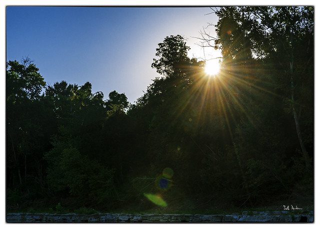 Morning Sun in Gilbert AR