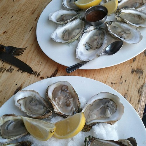 Oysters at Lawrence