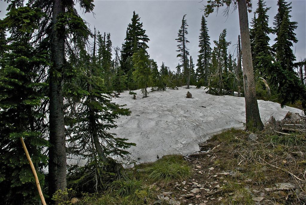 USFS Trail 98, Reservation Divide
