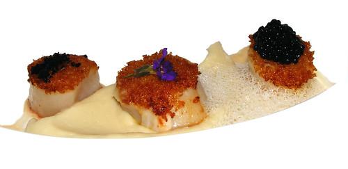 Coquilles - vadouvan -bloemkool - haringkuit