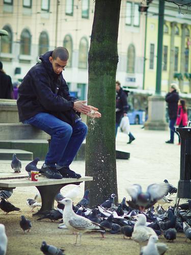 91/366 - The bird master by Flubie