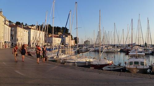 Piran's harbour