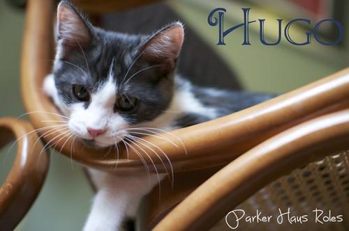hugo4-imp