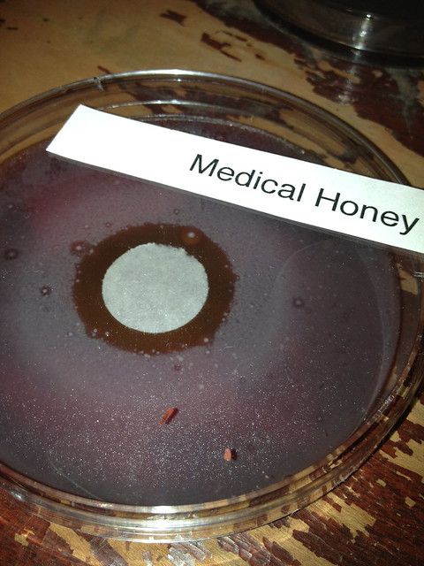 Medical Honey Day Two