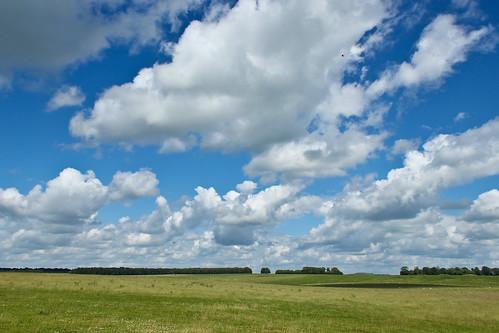 Salisbury Plain