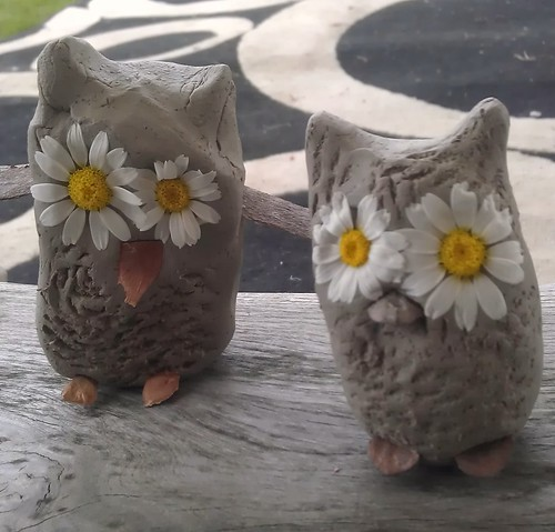 Cute Clay Owls