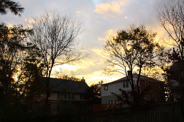 Dusk in the neighborhood