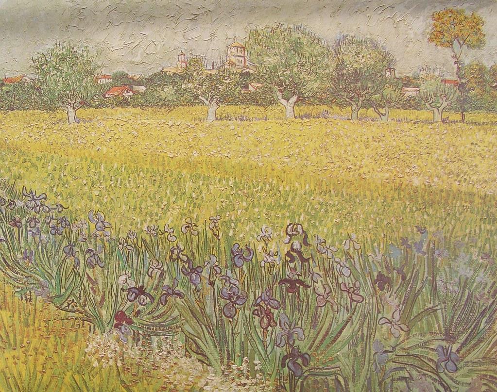 Vincent Van Gogh   (46)