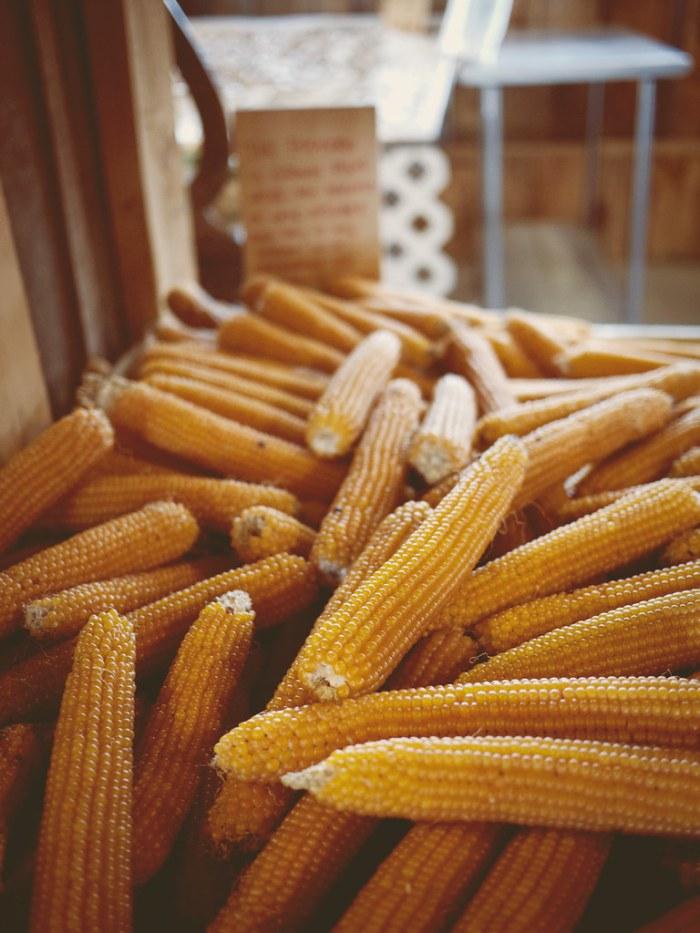 Beth's Farm Market Pop Corn
