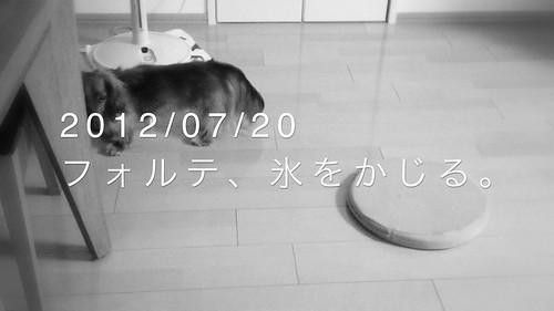 01 完成