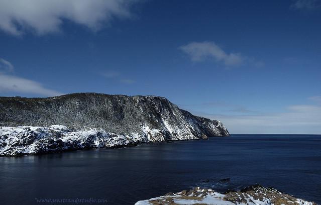 Red Cliffs, Logy Bay