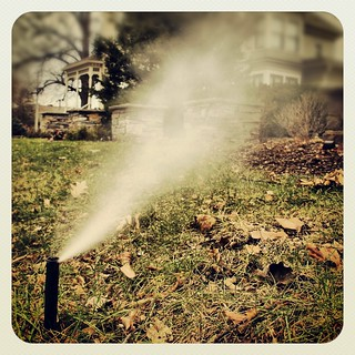 Irrigation Blowout ~ Spray head misting during sprinkler system winterizing