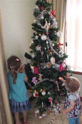 Our ever changing tree...