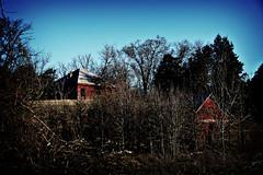 Calhoun Buildings Lomo 1