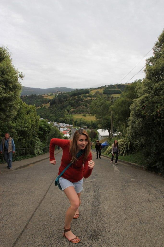 World's Steepest Street, Dunedin