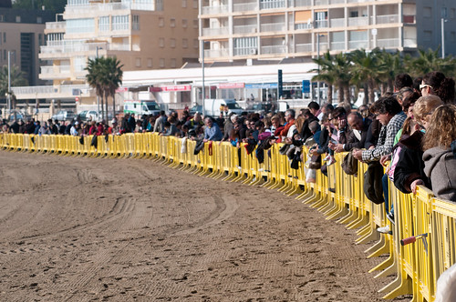 Carreras de burros y caballos en la playa de la concha