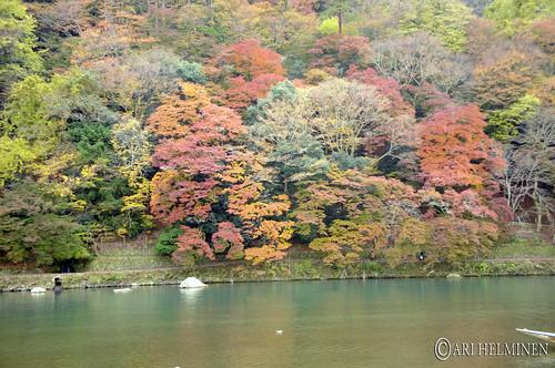保津川 hozugawa river
