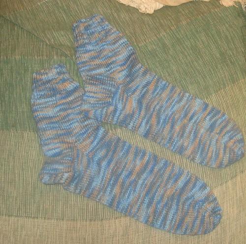 bluey brownie socks