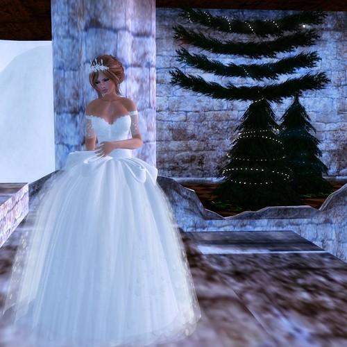 Evie's Closet Winter Gown 1