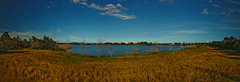 Indrio Savannahs Lake Panorama HDR