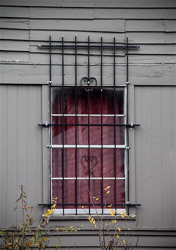 Barred Window by Little Rock Daily Photo