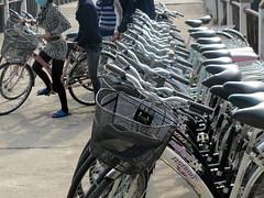 Cat Ba Bikes