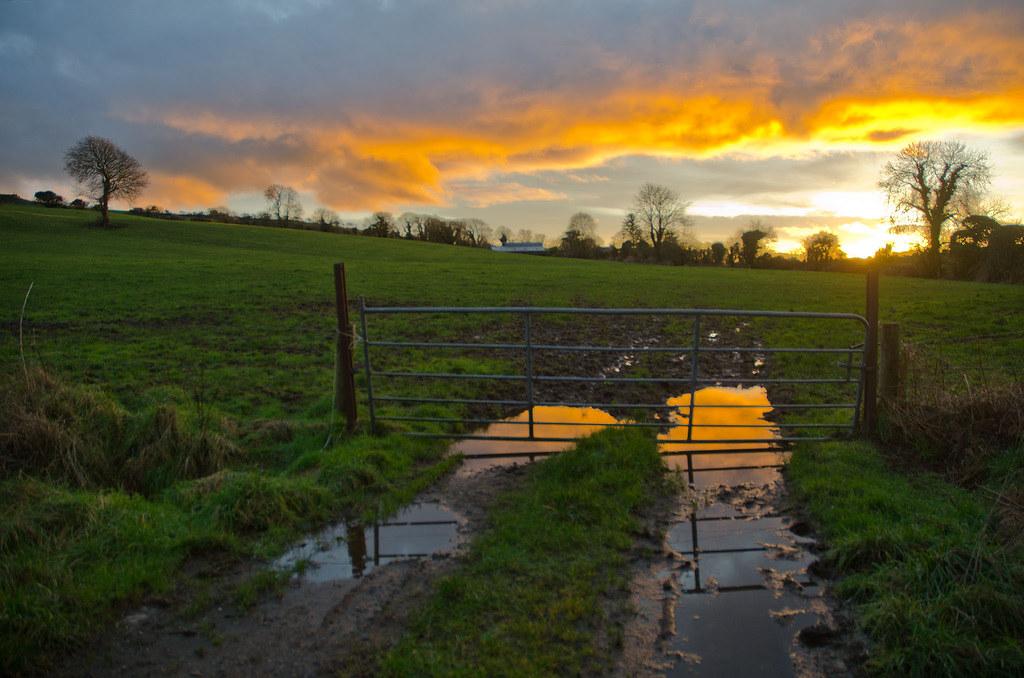 Gullanes Sunset