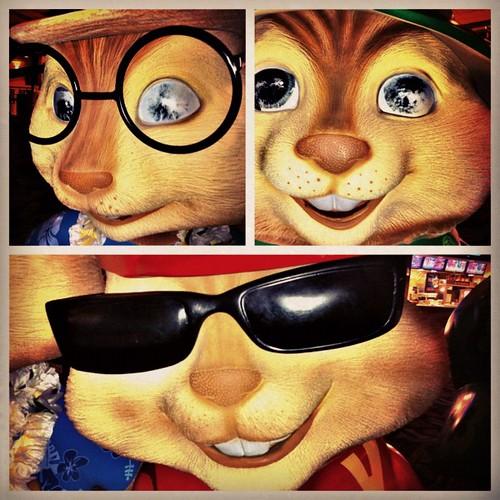186: blind chipmunks