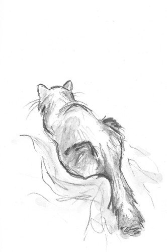 20120122_kitty_behind
