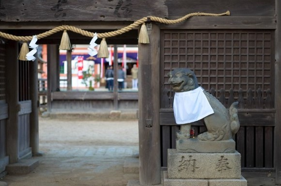 120102_sumiyoshi-shrine02