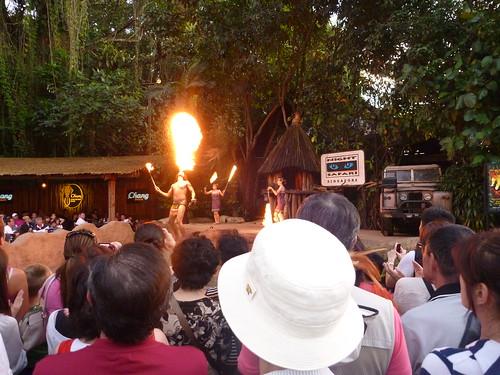 Fire breathers at night safari