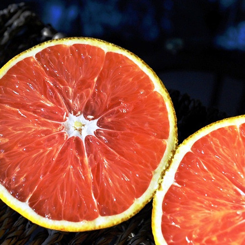 Navel Orange (Square)