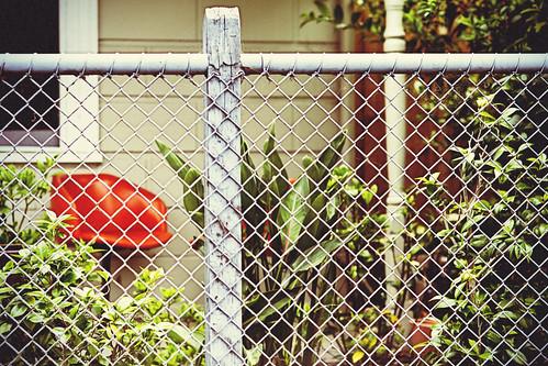fence, garden, seat by Matt Hovey