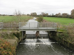 6. The Eastern Adur at Wineham