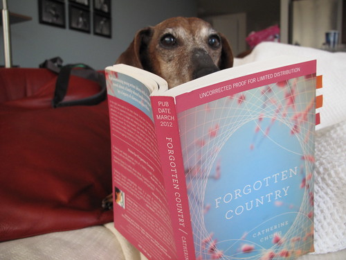 Scarlet, reading Forgotten Country by Catherine Chung