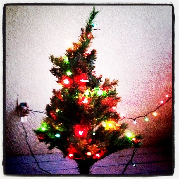 Instagram Christmas Tree
